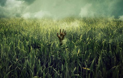 """""""In The Tall Grass"""" Review"""